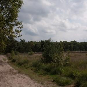 Oud Meer